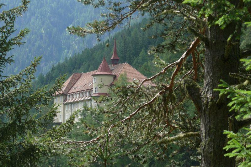 Het hotel ligt midden in de bossen