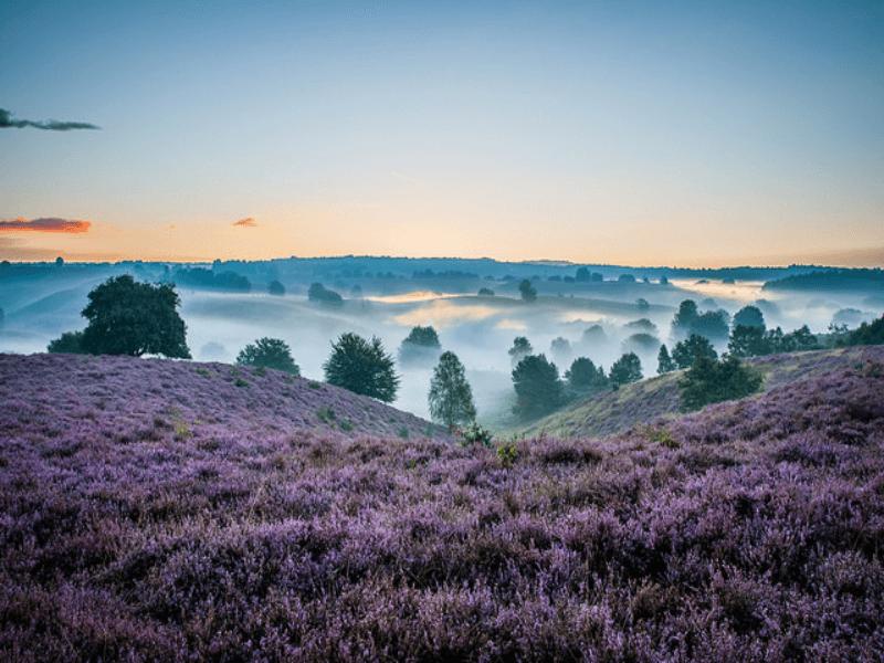 Magische uitzichten, Nationaal Park Veluwezoom