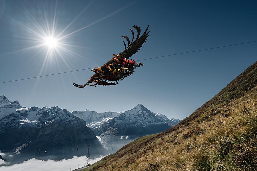 First Eagle Glider