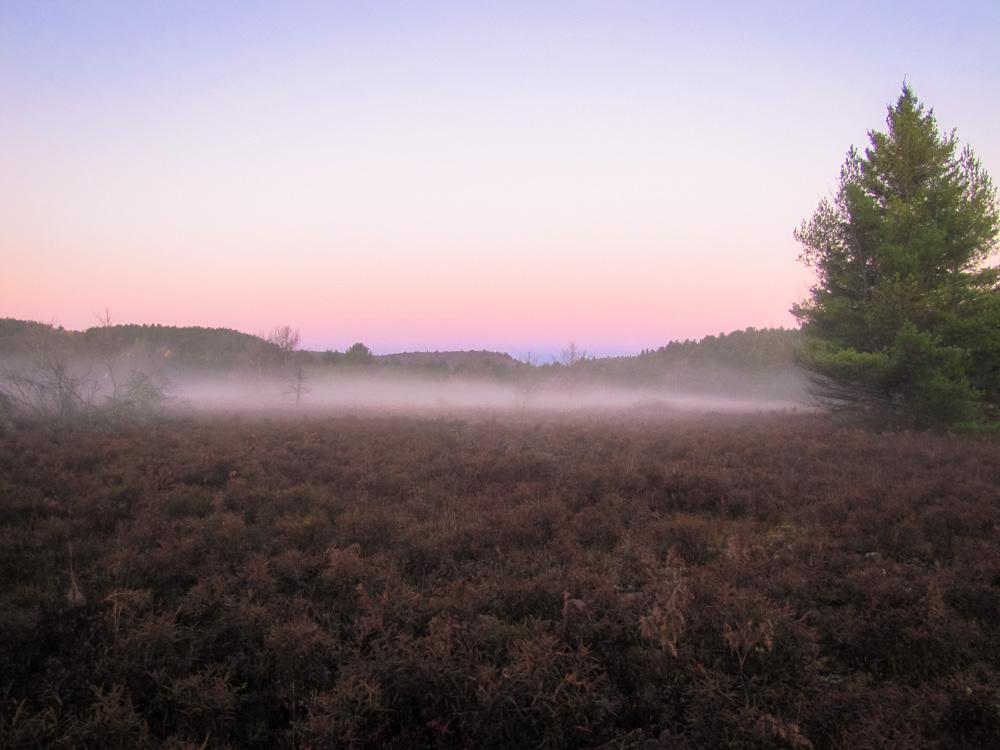 zonsopgang Algonquin