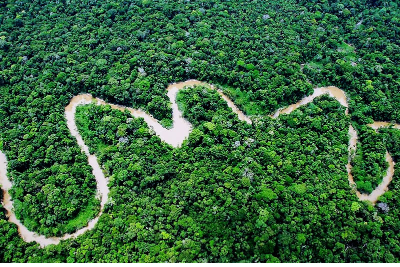 Andes Amazon