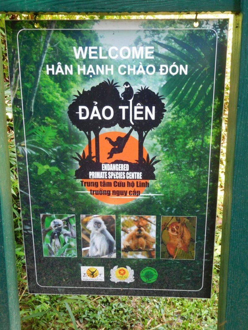 Als het kan, breng dan zeker een bezoekje aan Dao Tien
