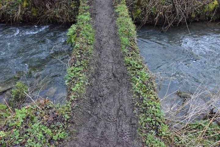 Trail des Carrières Gesves - Mountainreporters