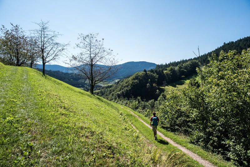 Uitzicht wandelroute Schwarzwaldsteig