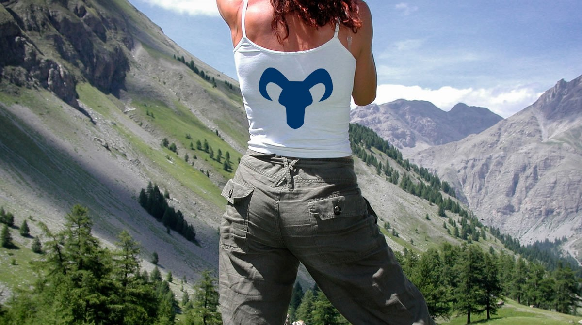 Mountainreporters shirt