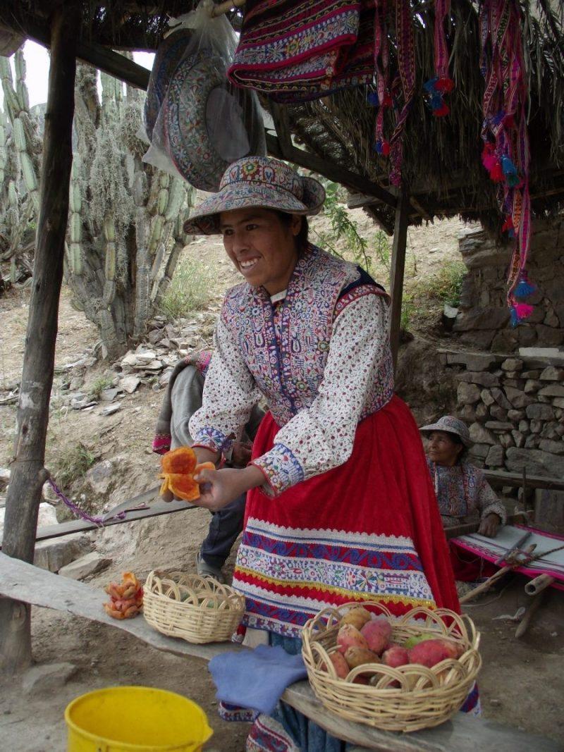 Onderweg verkocht deze Peruaanse dame heerlijk fruit