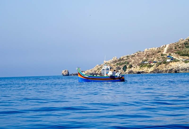 Gozo Zee