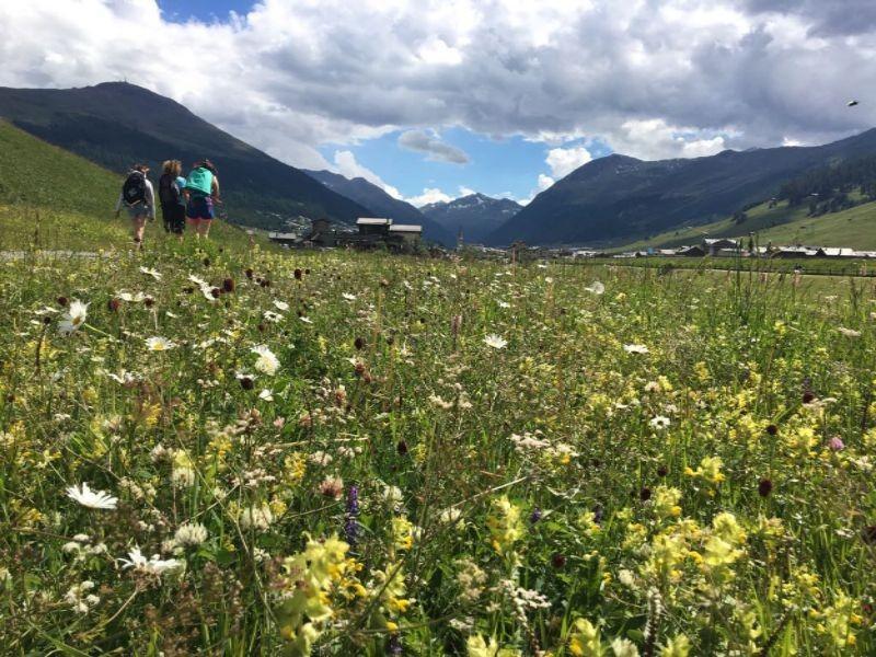 Wandelen in de bergen nabij Livigno