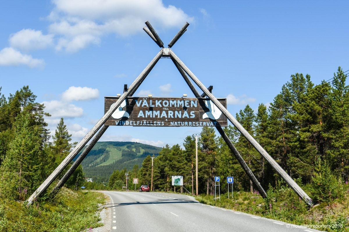 Ammarnas