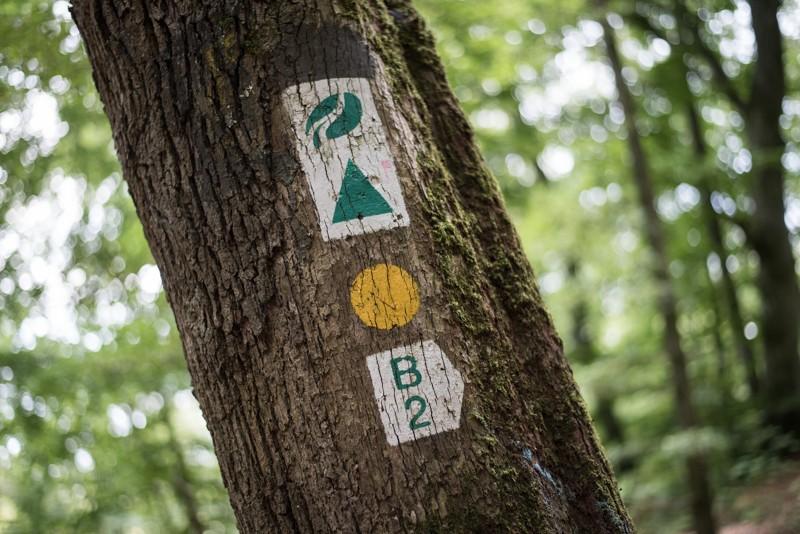 De routes waren duidelijk gemarkeerd | eigen foto: Manja Herrebrugh, Mountainreporters