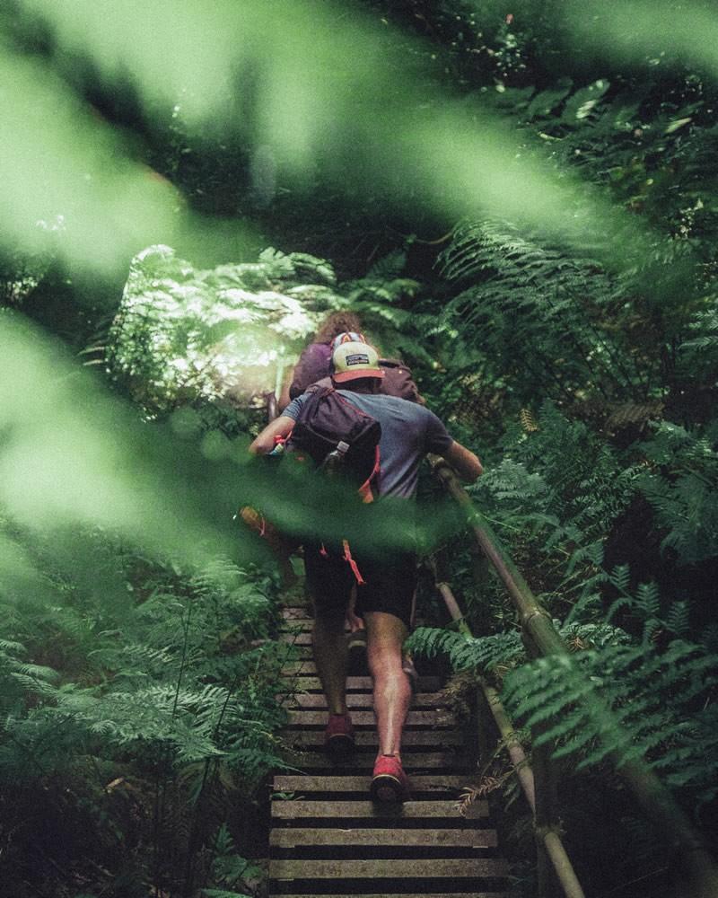 Hiking Austrailia