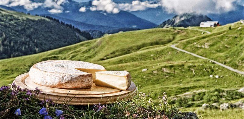 De Reblochon fermier met de groene stip wordt op de boerderij in de bergen gemaakt en niet vermengd met andere melk