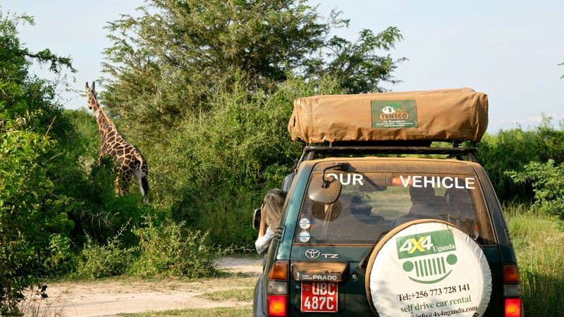Op safari in Murchison Falls
