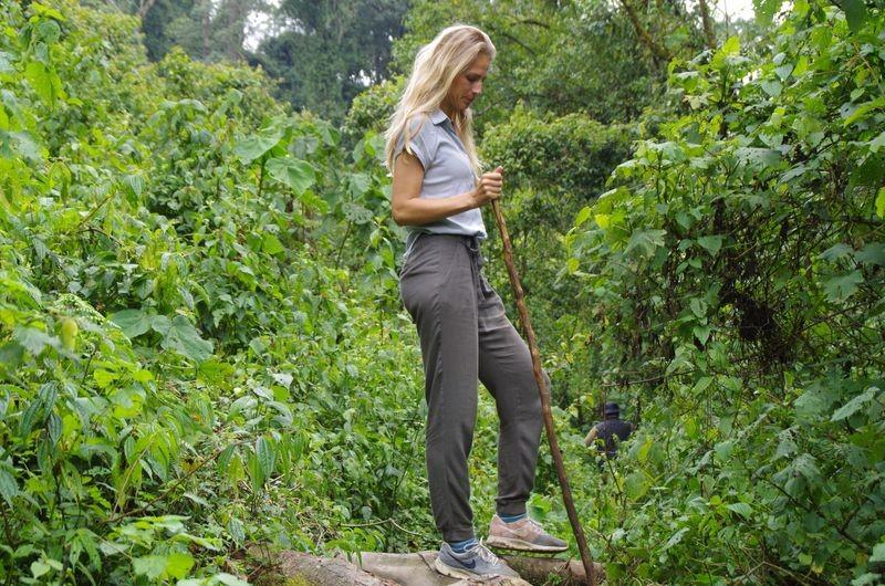 We hiken door de dichte jungle op zoek naar de gorilla's.