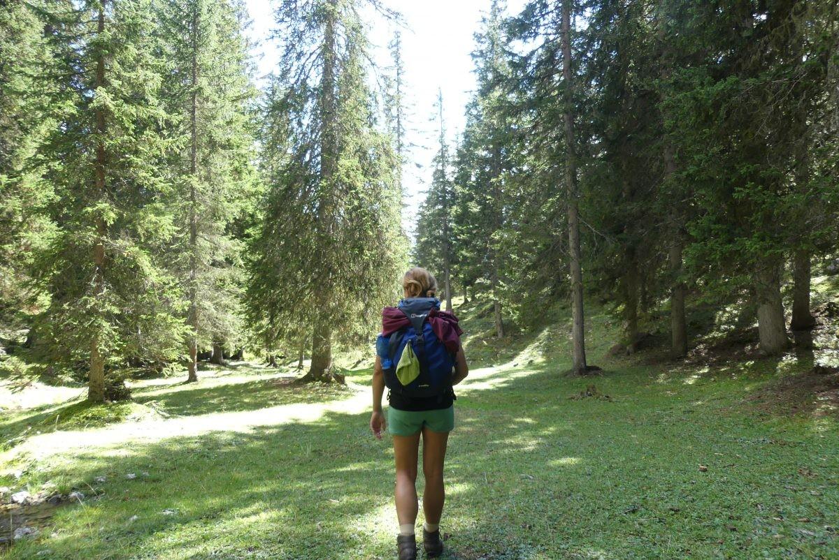 Weer een stuk lager, tussen de bomen, bij Malga Ra Stua tijdens de huttentocht in de Dolomieten