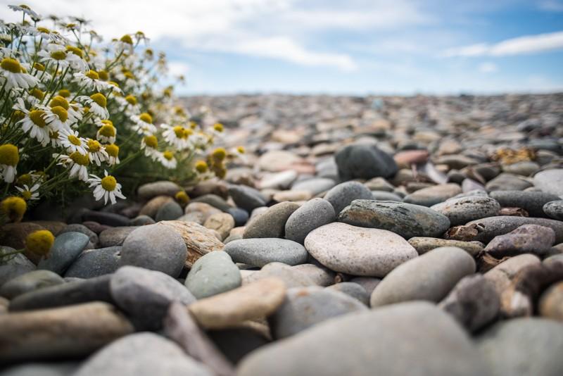 Een laag standpunt zorgt voor een hele andere kijk op de stenen | Foto: Manja Herrebrugh, Mountainreporters