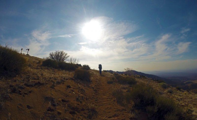 André wandelt met zonsopkomst - Mohave Desert - Copyright André de Jel