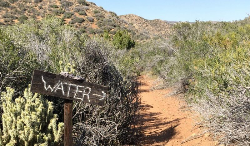 Waterbronnen zijn schaars in de woestijn! - Copyright André de Jel