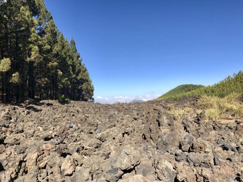 De trail van Chinyero leidt je telkens langs de grenzen van de lava