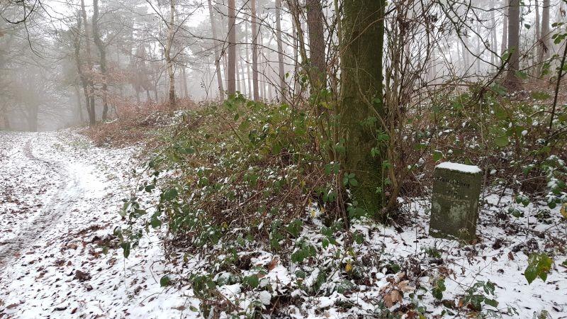 Freilenberg Reichswald