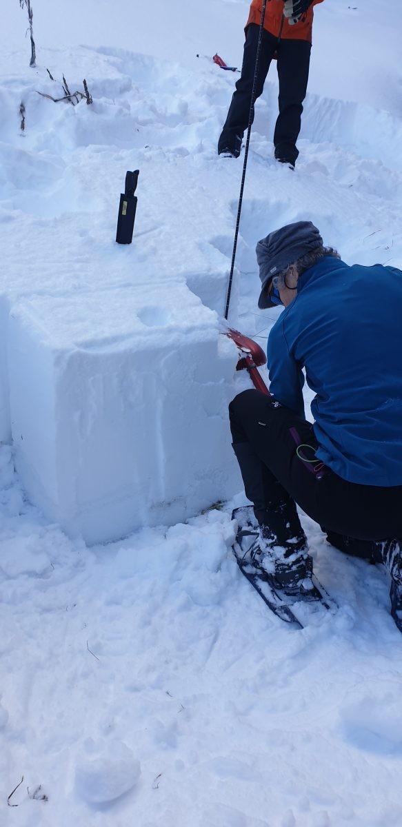 Extended Collum Test voor het testen van de stabiliteit van het sneeuwdek. Foto: Sietske Mensing