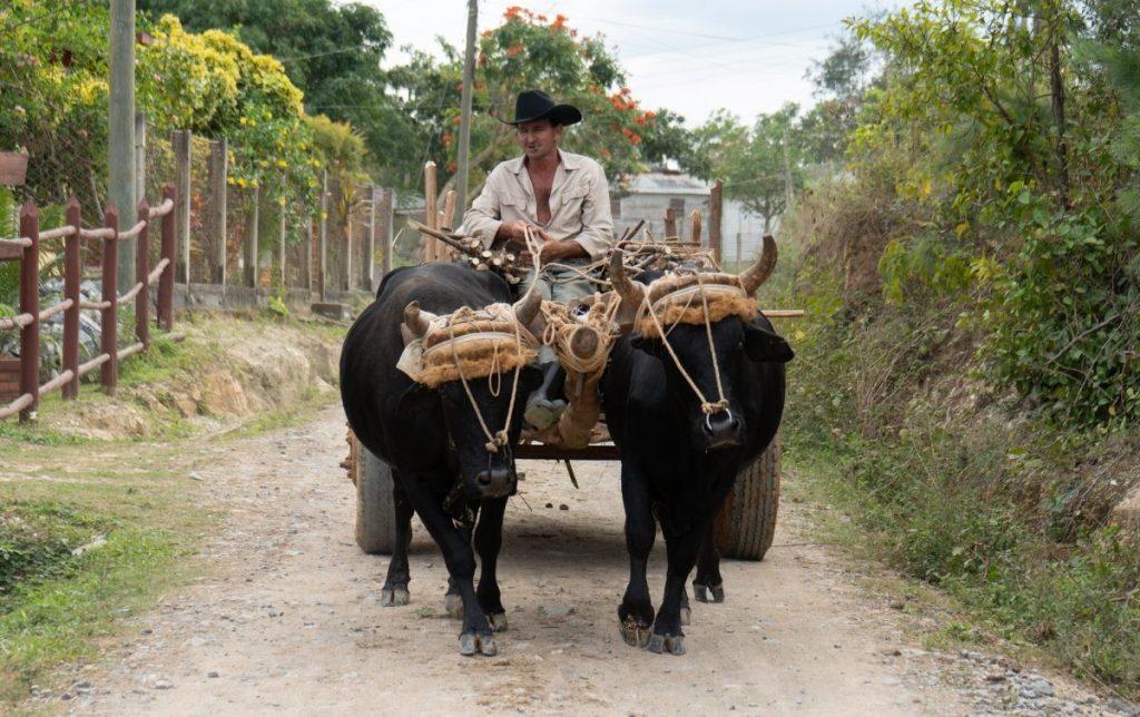 Fietsavonturier verkent Cuba