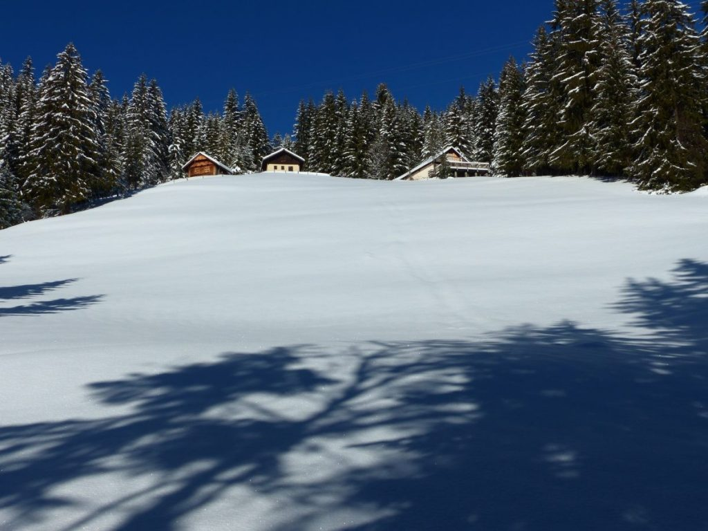 Maagdelijke sneeuwhelling waar we een mooi spoor op gaan zetten. Foto: Sietske Mensing