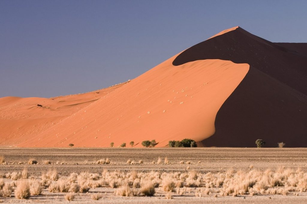 Dune 45 Namibie Wikimedia Commons