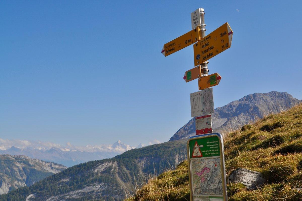 De route wordt duidelijk aangegeven met gele bordjes.