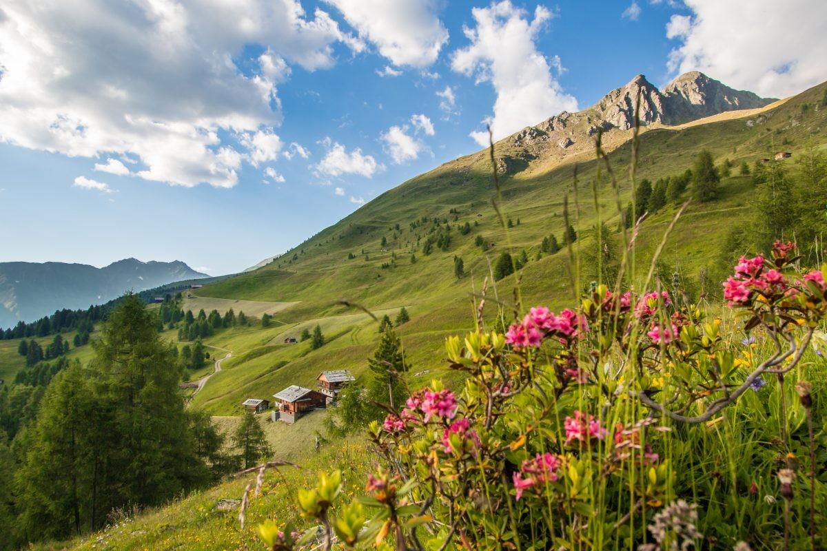 Prachtige natuur in Kronplatz (Foto TV Gsieser Tal - Kamilla Photography)