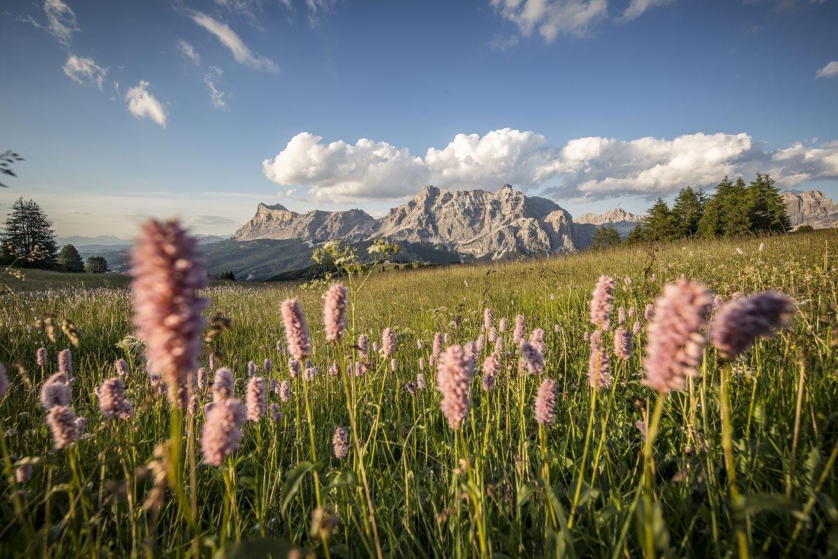 Dolomieten Foto: © Alta Badia Brand, freddy planinschek