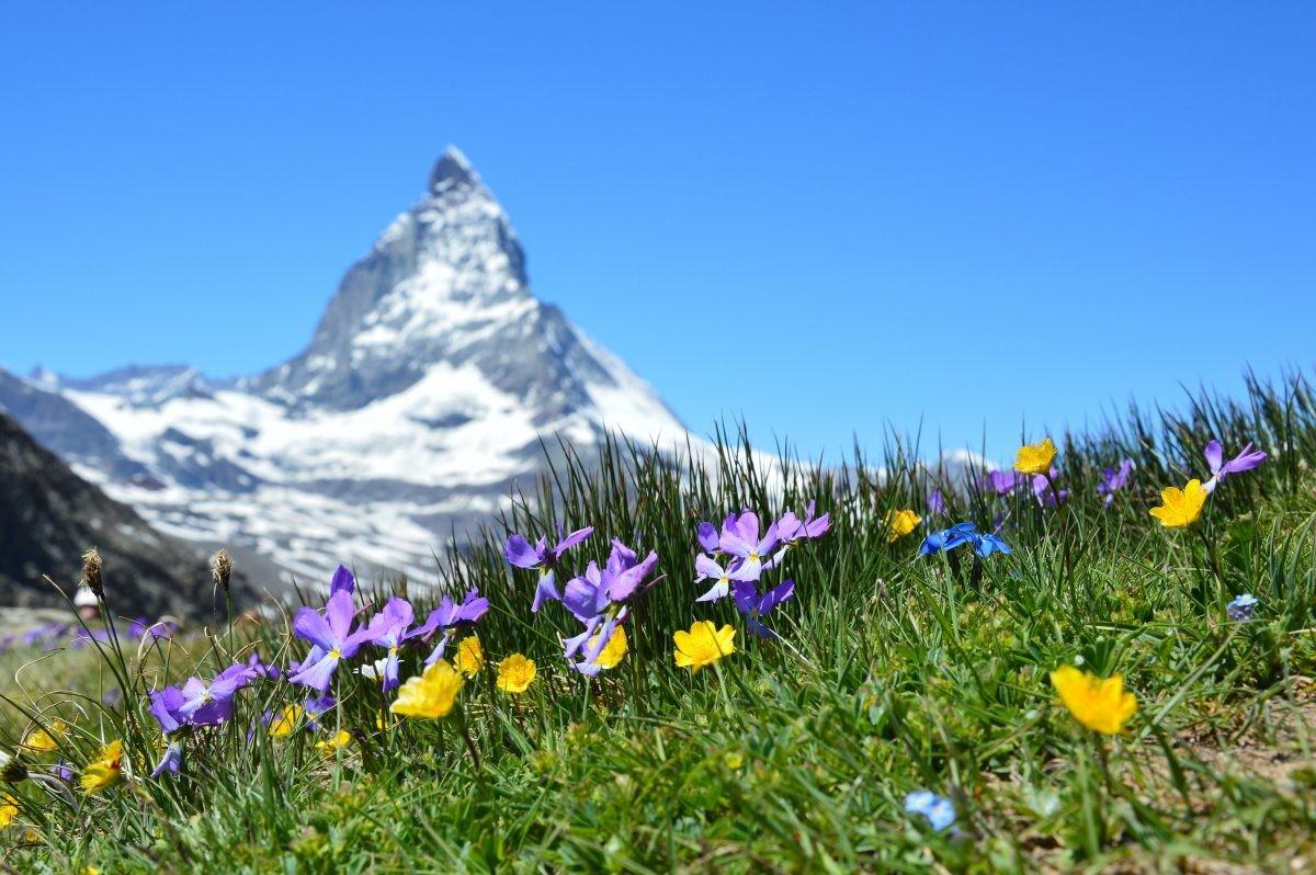 De karakteristieke top van de Matterhorn