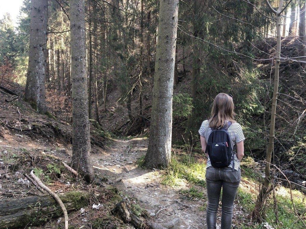 Wandelen in het Duitse gebied Sauerland: Winterberg