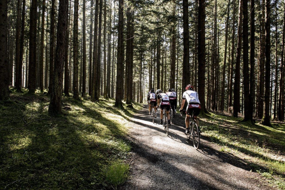 Starten kan individueel of als team. Foto: Franz Oss