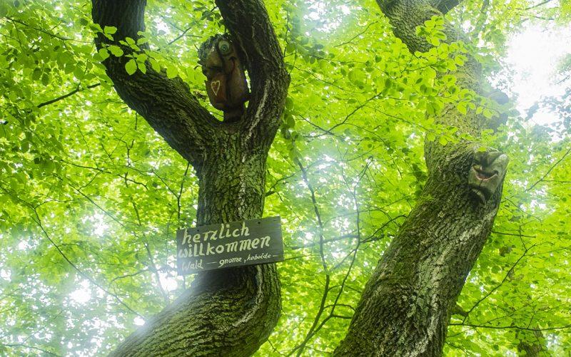 De bossen in Duisburg heten je welkom