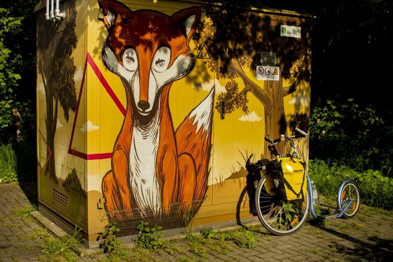 Een vos in de stad!