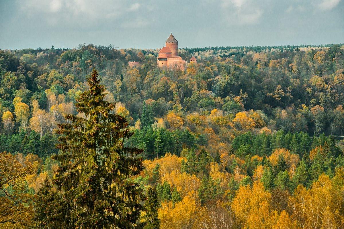 De overweldigende natuur van Gauja National Park. Foto: Latvia Travel. Reinis Hofmanis
