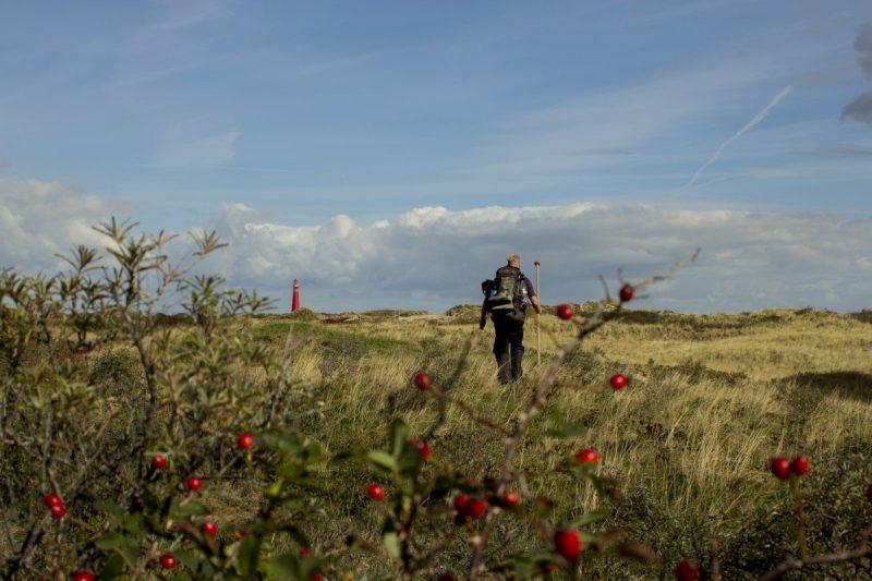 De iconische vuurtoren van Schiermonnikoog, gezien vanaf paal 2