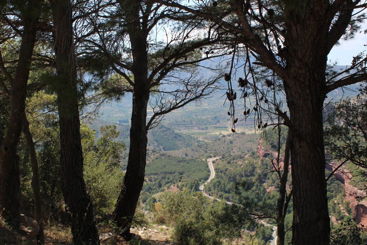Siurana is gebouwd op een klif in het Prades-gebergte