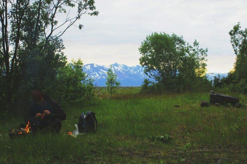 Het is heerlijk relaxen in de Noorse Fjorden. De Sami laten hun rendieren aan de kust lopen vanwege de muggen in het binnenland