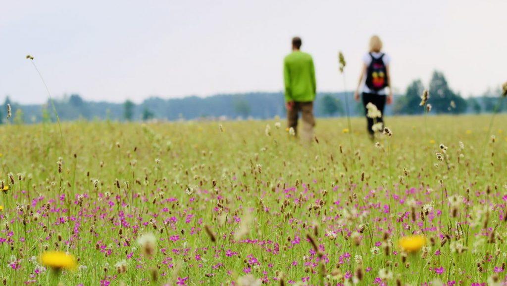 Pape Nature Park Letland