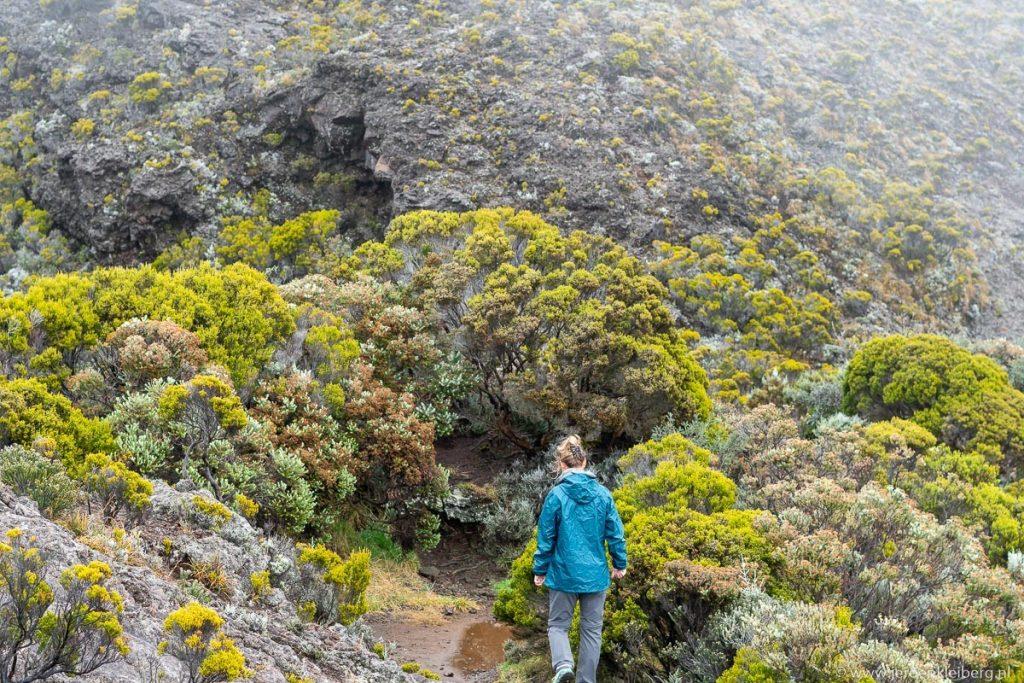 Wandelen op La Réunion