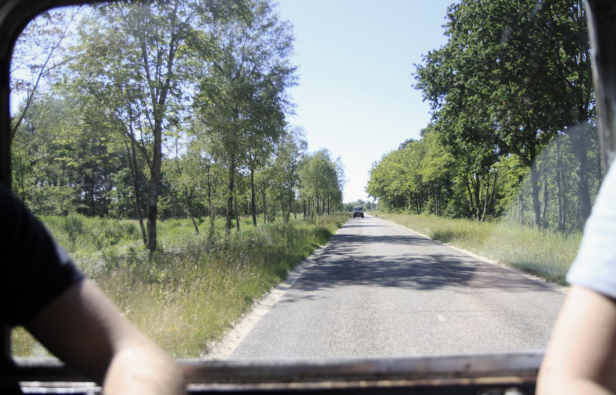 Op jeepsafari in de Groningse wildernis
