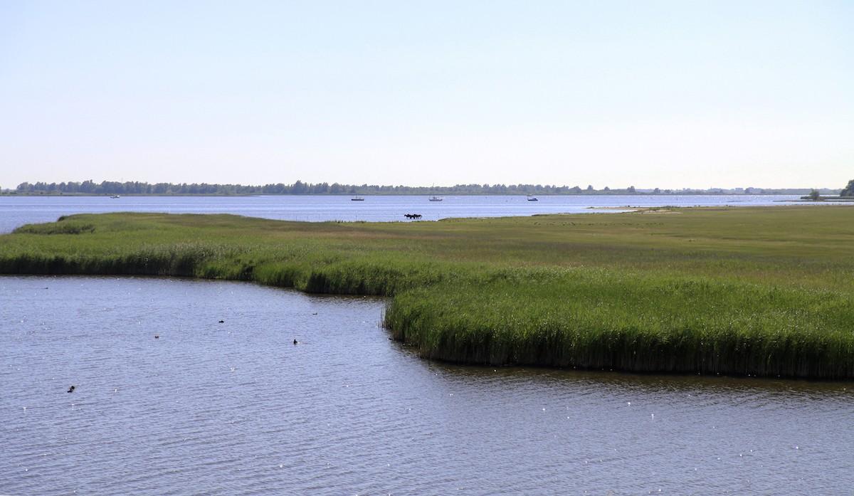 Het Lauwersmeer is een oase van rust