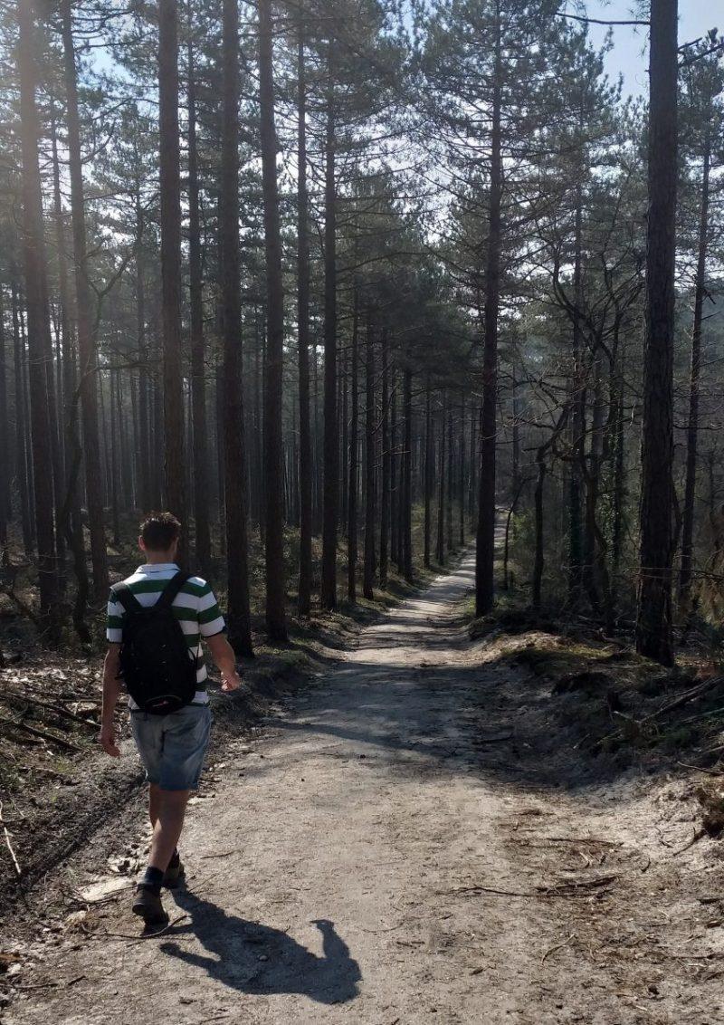 Een deel van het pad van de Duintoppenroute