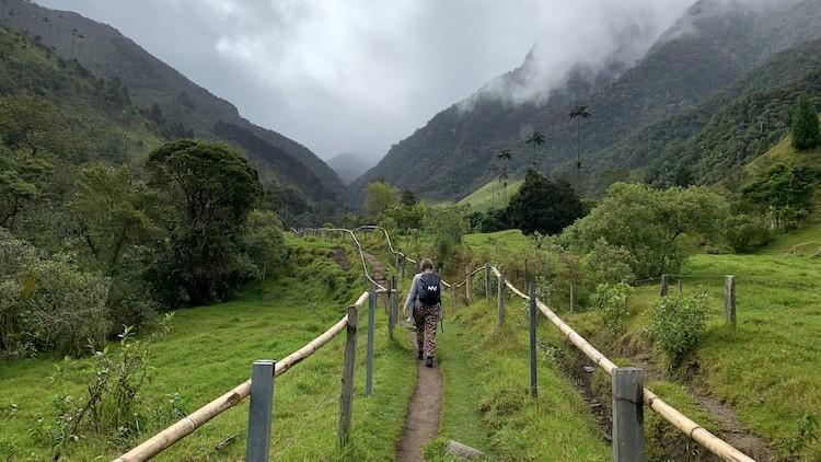 De prachtig groene Cocora Vallei. Foto: Dagmar Wolters Colombia