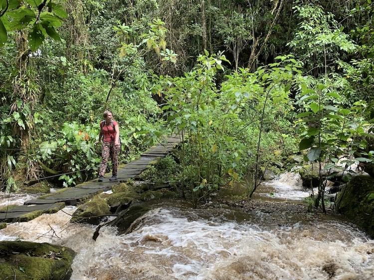 Er zijn meerdere bruggen tijdens de wandeling. Colombia