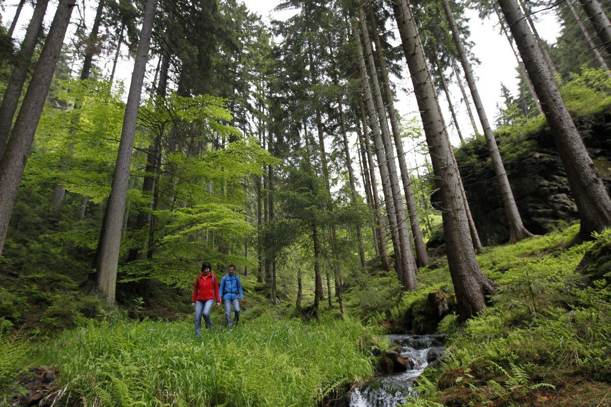 Ontelbare wandelpaden door de natuur van Thüringen. Foto: Oberhof Tourismus GmbH
