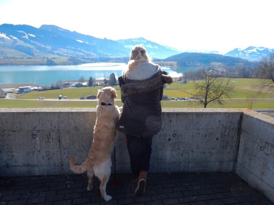 Op vakantie met je hond en betaald worden