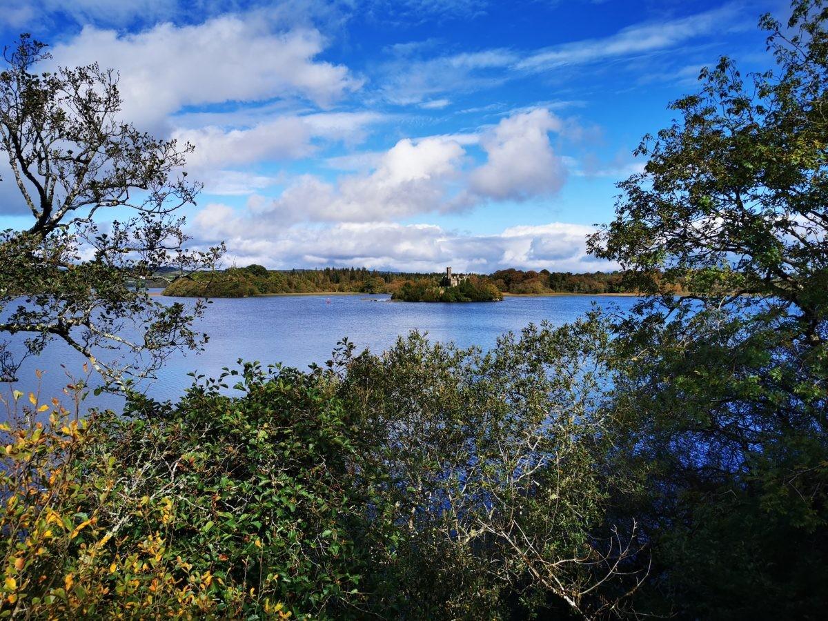 Uitzicht over Castle Island, vanuit Canopy tree walk